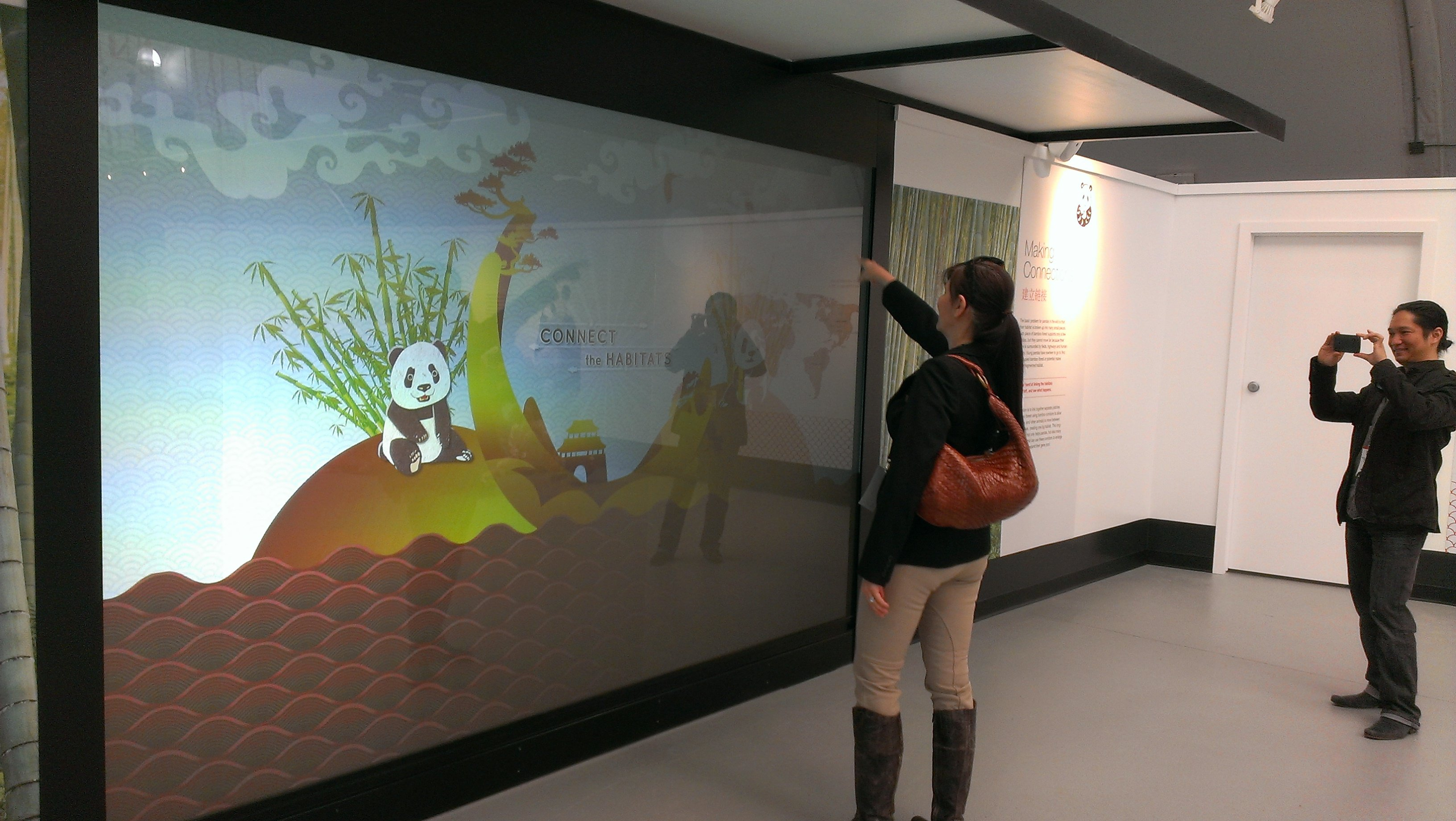 interactive wall display